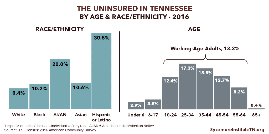 The Uninsured in TN by Age & Race Ethnicity - 2016