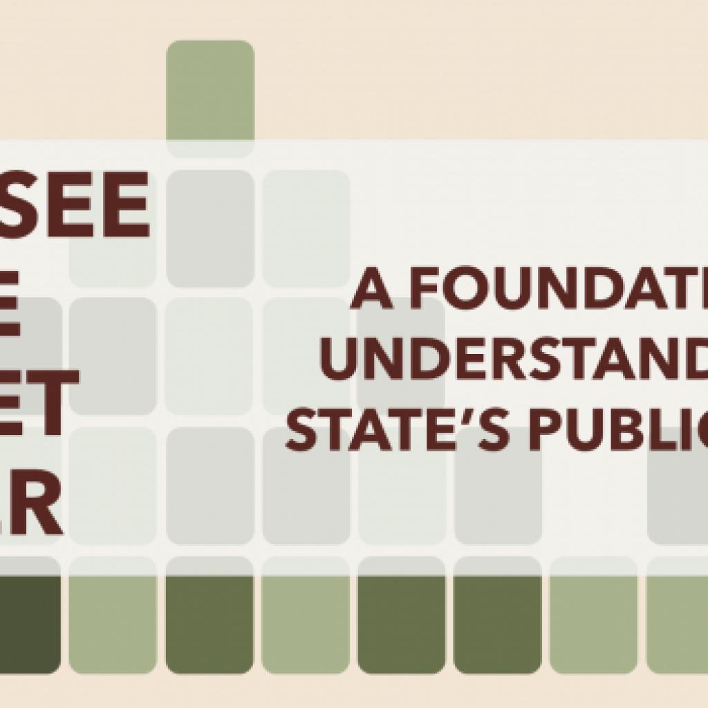 Tennessee State Budget Primer - Header 2
