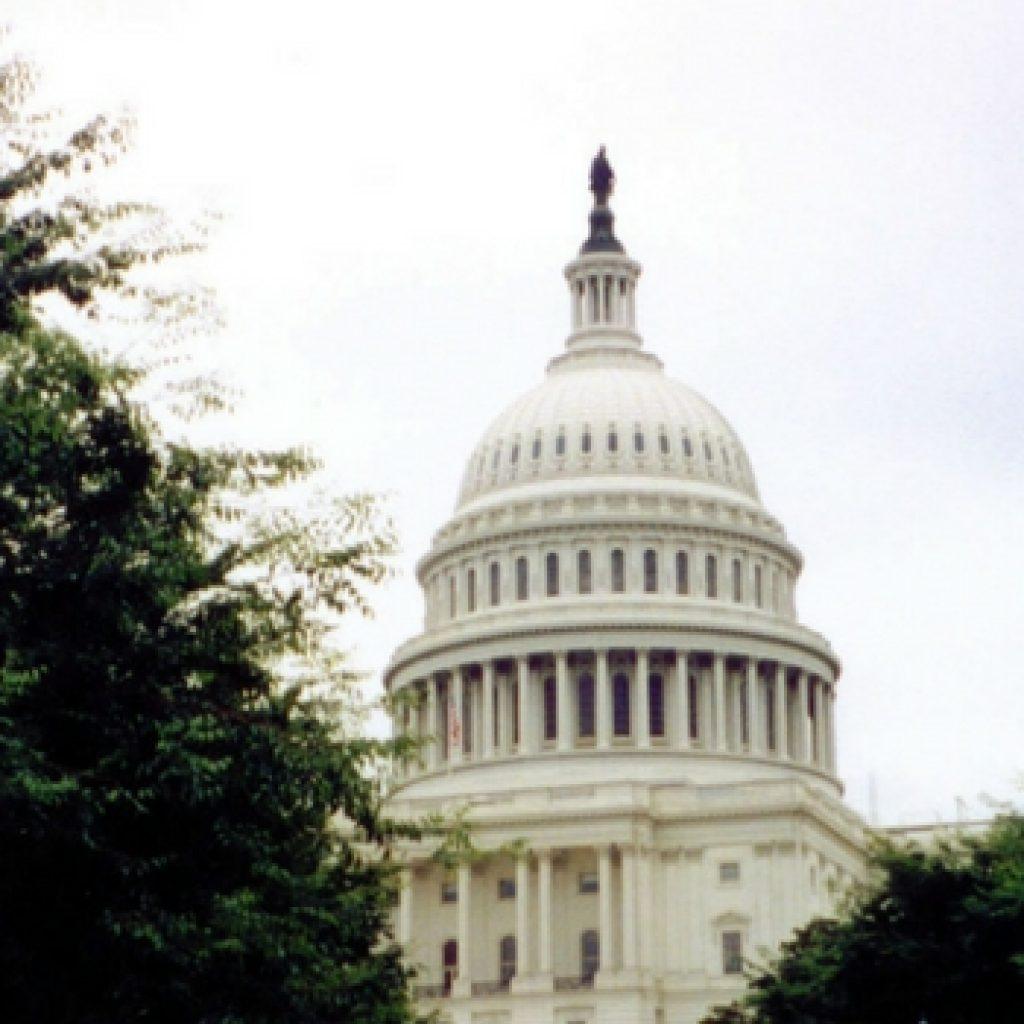 U.S. Capitol header 2