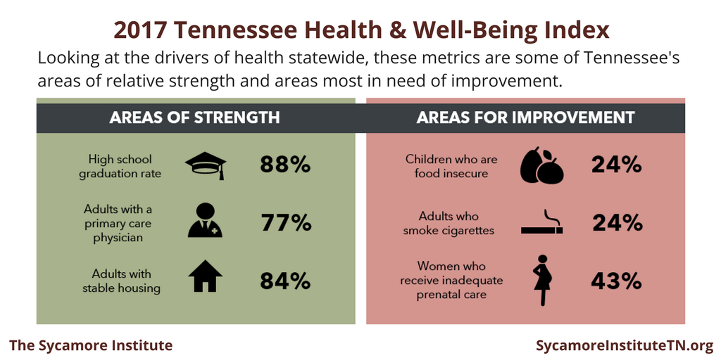 2017 Tennessee Health & Well-Being Index Areas of Strength & Improvement