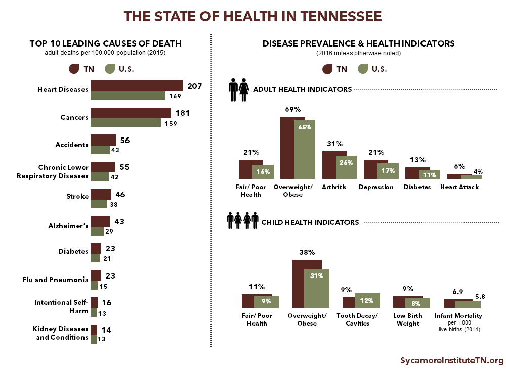 The State of Health in Tennessee