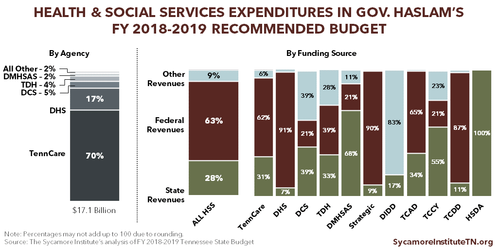 Health & Social Services Expenditures in Gov. Haslam's FY 2018-2019 Recommended Budget