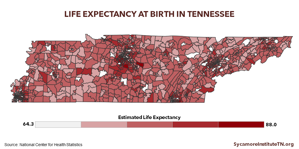 Life Expectancy at Birth in Tennessee