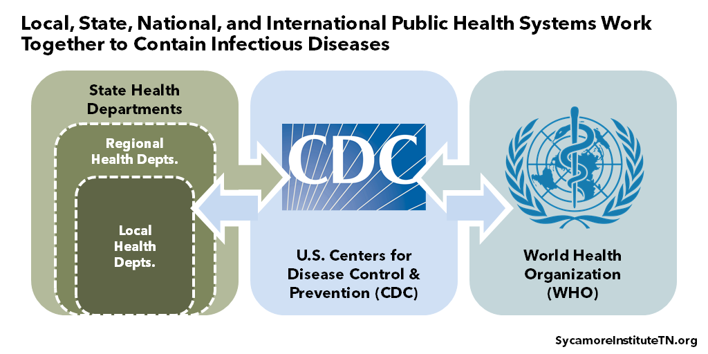 Local, State, National, and International Public Health Systems Work Together to Contain Infectious Diseases