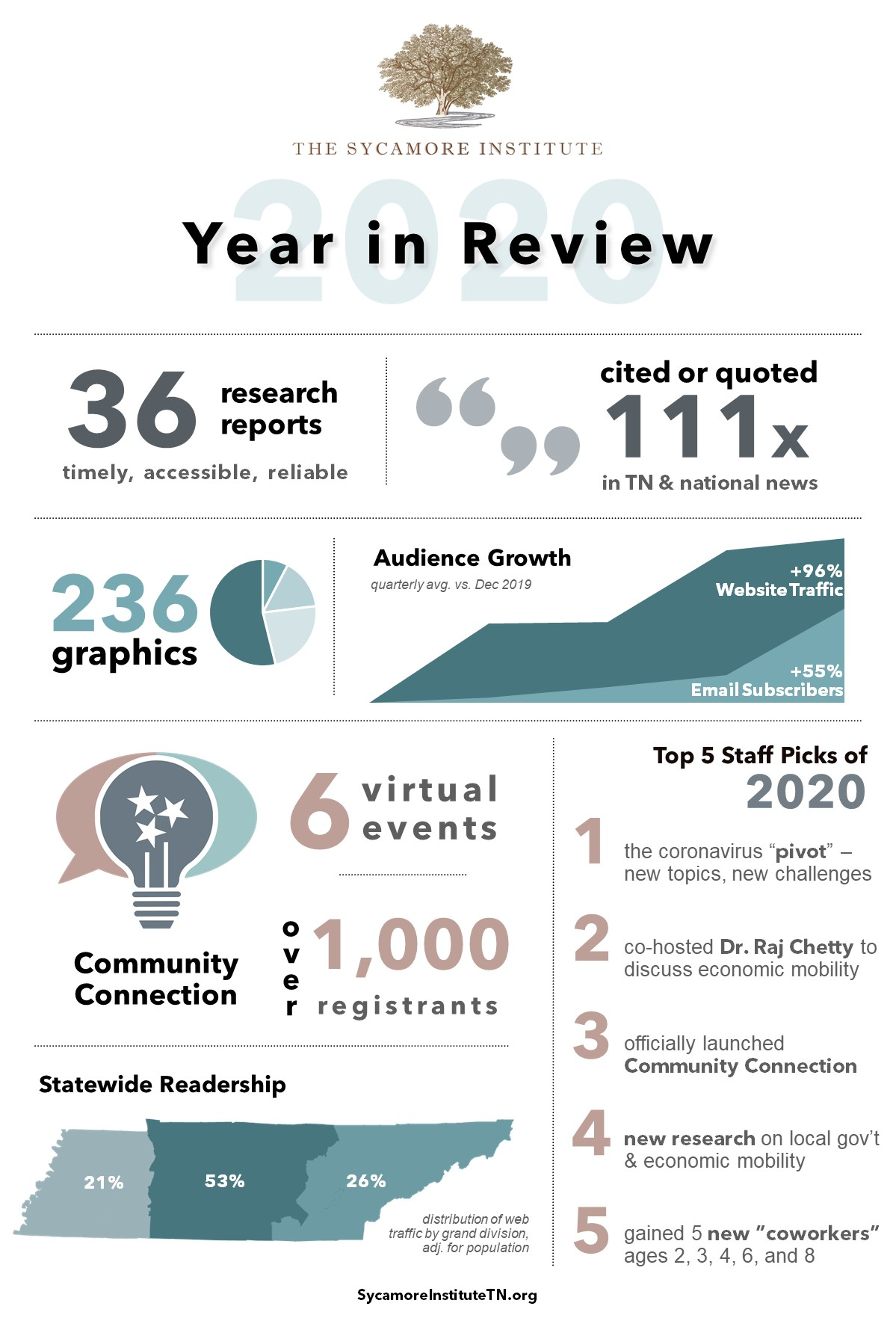 The Sycamore Institute's 2020 Year in Review infographic