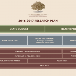 Introducing TSI's 2016-17 Research Plan