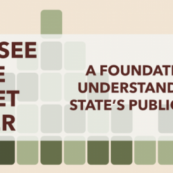 Tennessee State Budget Primer (First Edition)
