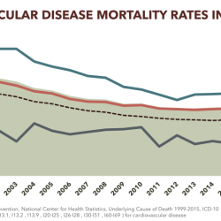 Cardiovascular Disease Mortality Rates in Tennessee