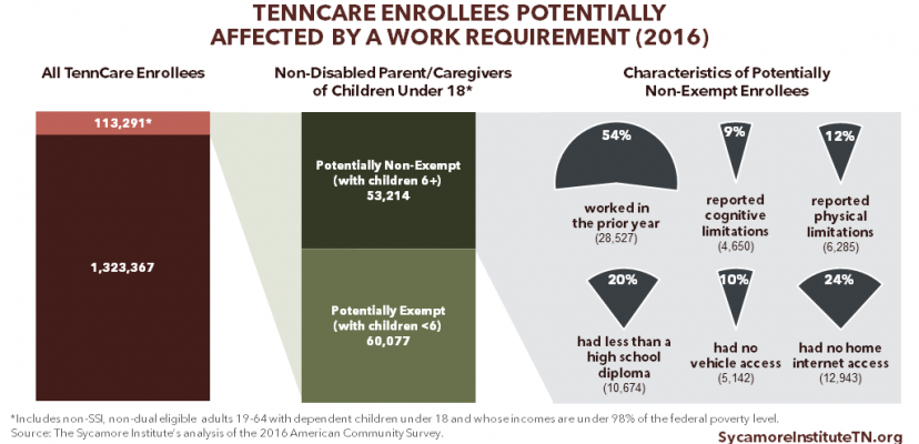 Obstacles to Work among TennCare Enrollees Potentially Affected by a Work Requirement