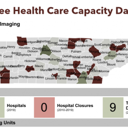 Tennessee Health Care Capacity Dashboard